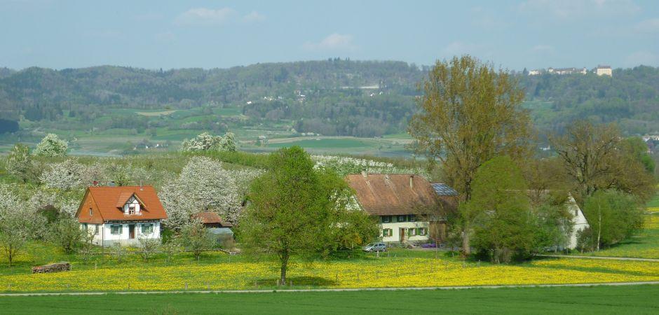Bild-Hof-940-450