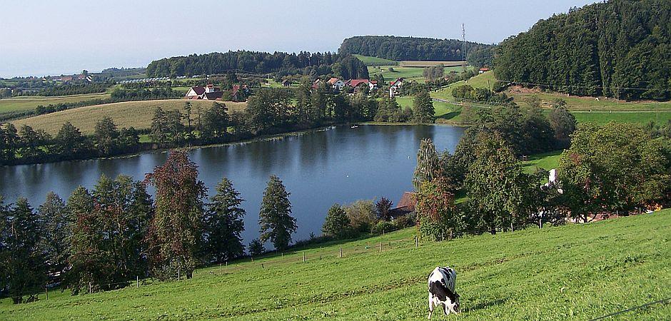 Guehrer1-Lage-des-Hofes