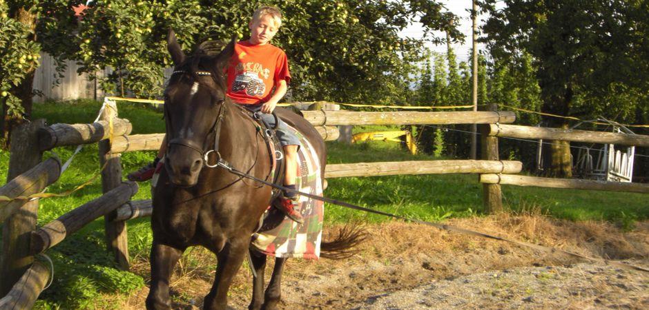 Metzler9-KindmitPferd