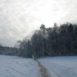 eranstaltung-Winterlandschaft