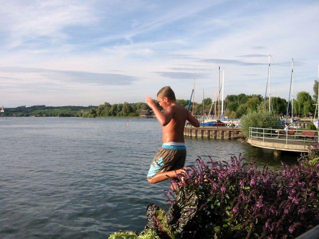Seespringer