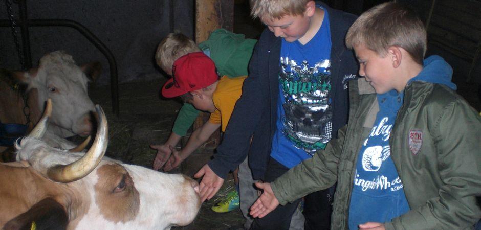 Linsenbuehlhof-Tiere-Kinder