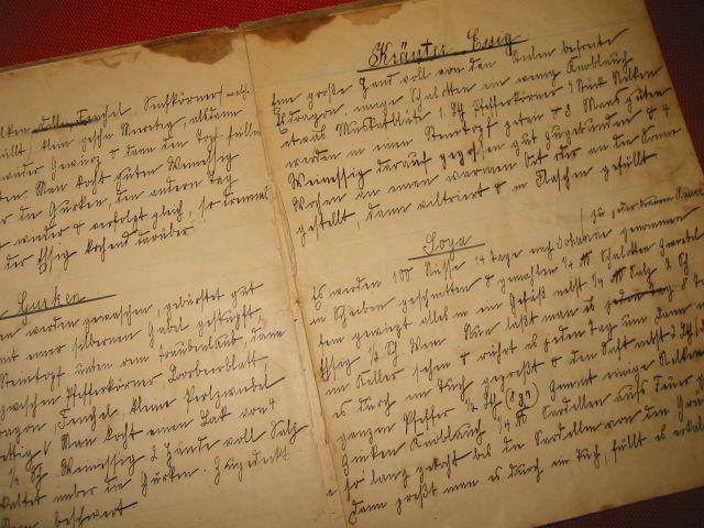 Kraeuteressig Suetterlinschrift