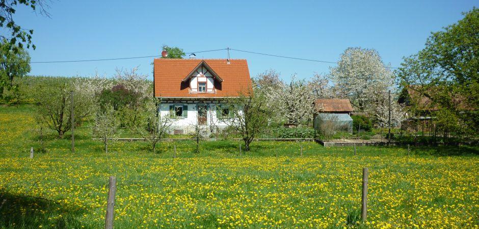 Bild-Ferienwohnung-940-450